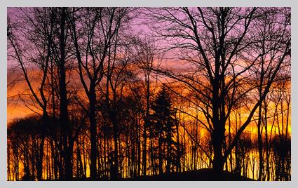 sunset_425.jpg