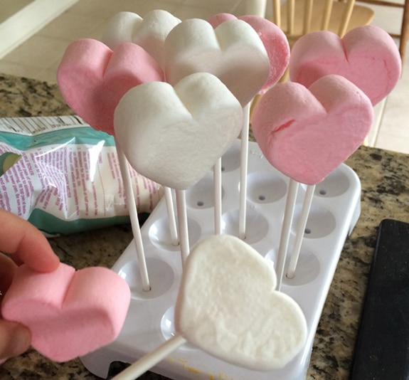 marshmallowpopmarshmallows1 Chocolate Covered Marshmallow Pops