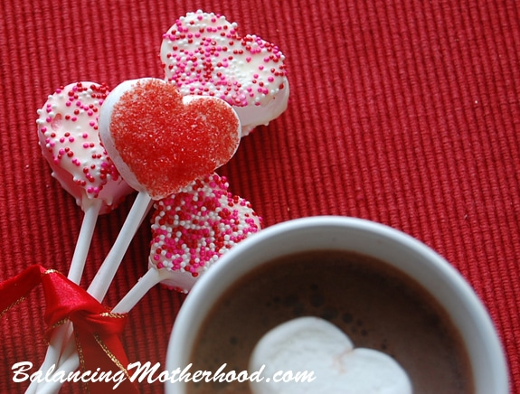 marshmallowpopscocoa Chocolate Covered Marshmallow Pops