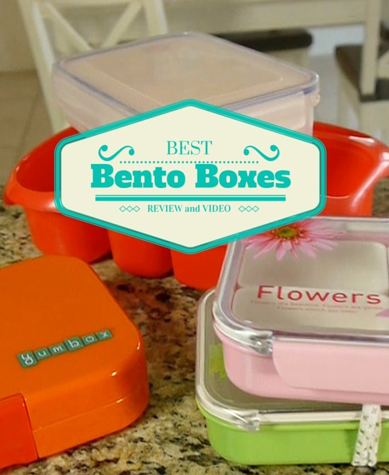 the best bento lunch box for school lunches. Black Bedroom Furniture Sets. Home Design Ideas